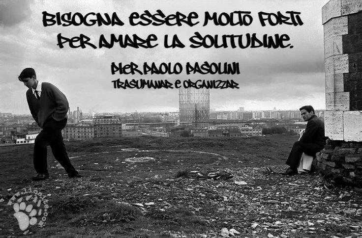 """Molto forti, o solo senza scelta :) In quel caso non potendo odiare la tua vita, cerchi di imparare a conviverci se non proprio amarla. Ed alla fine si cresce.  """"Bisogna essere molto forti per amare la solitudine."""" Pier Paolo Pasolini - Trasumanar e organizzar  #pierpaolopasolini, #pasolini, #solitudine, #forza, #fotografia, #tag, #italiano,"""