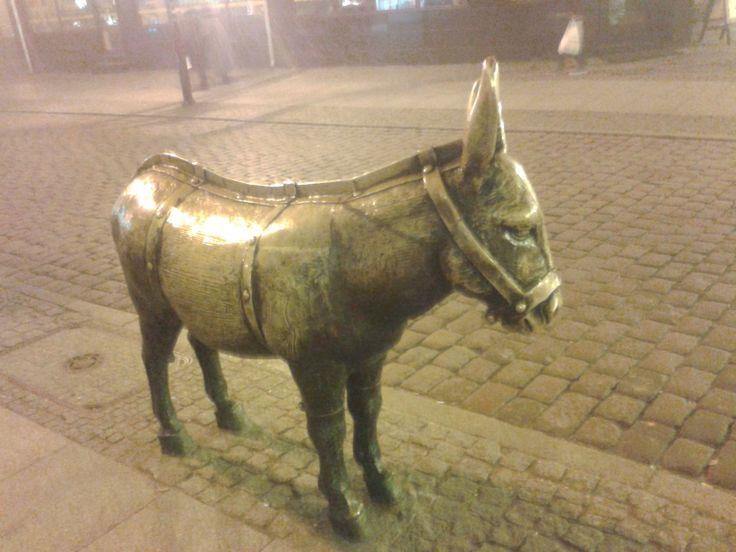 Statue of a donkey :D  Torun, Poland