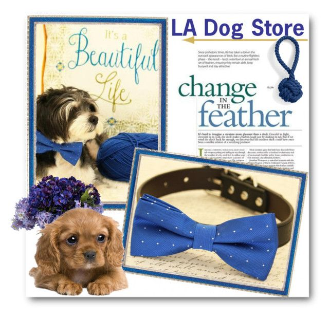 """""""LA Dog Store"""" by ladogstores ❤ liked on Polyvore featuring Haffke, John-Richard and Lands' End"""