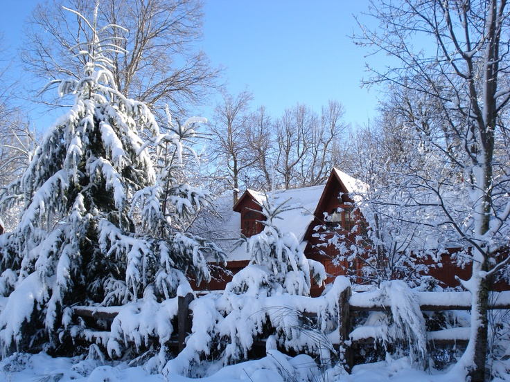 How about staying in a cabin covered in snow, in front of the chimney with a hot chocolate between your hands?