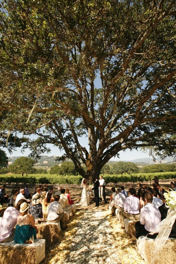 11 Best Images About Hay Bales Wedding Seating On