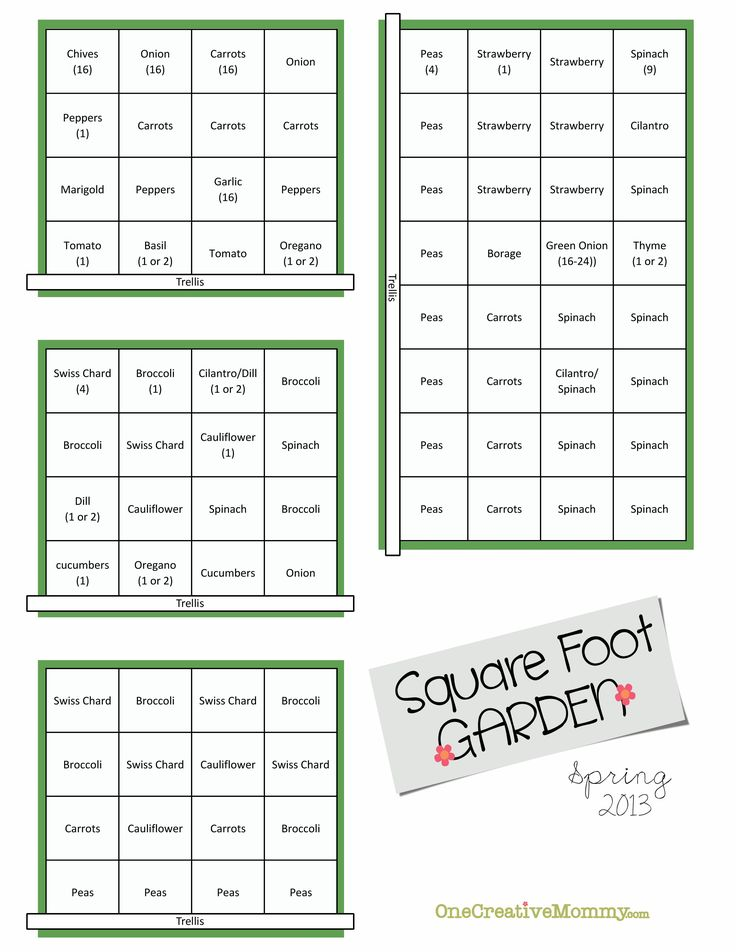 My Spring Square Foot Garden Plan {OneCreativeMommy.com}