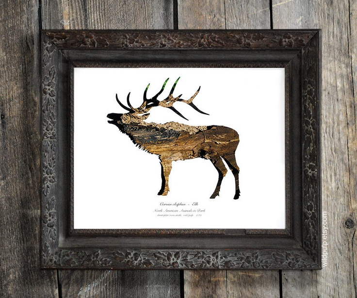 26 best hunting | hunting gear | hunting home decor images on