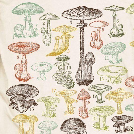 Mushrooms Of the World Men's Science Tee Shirt
