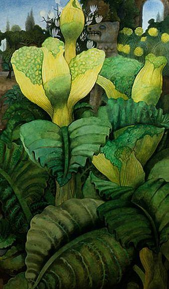 stilllifequickheart: Edward Burra Flowering Vegetables 1957-59
