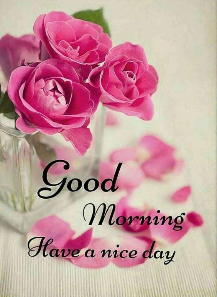 Pin On Good Morning Quotes Flower wallpaper good morning