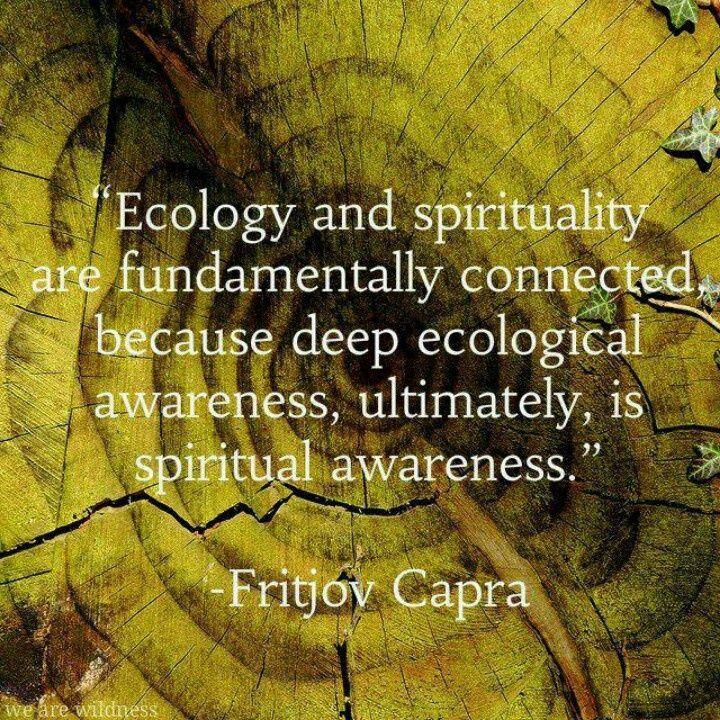 Ecology- Fritjov Capra
