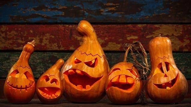 Så gör du en klassisk pumpalykta till Halloween - här är en enkel steg för steg-guide till hur du skär din pumpa till en skrämmande lykta!