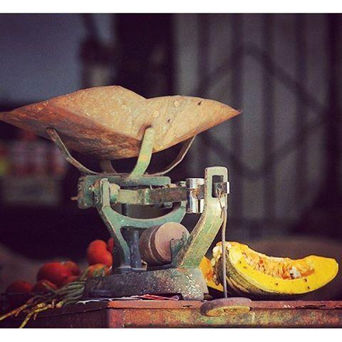 SnapWidget | ¿Quiénes mienten más? ¿Los políticos o las pesas de los mercados cubanos? Artículo relacionado: https://www.cubanet.org/actualidad-destacados/quien-estafa-a-quien/ #Cuba #mercado #agricultura #precios #mentiras #política #sátira #humor #cubanos #cubanas #cubanet