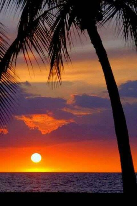 Go to Hawaii and see the ocean and sunset and go there for a honeymoon !!!!!