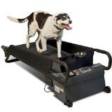 Pet Treadmills on Sale - TOP DEALS ON THE WEB