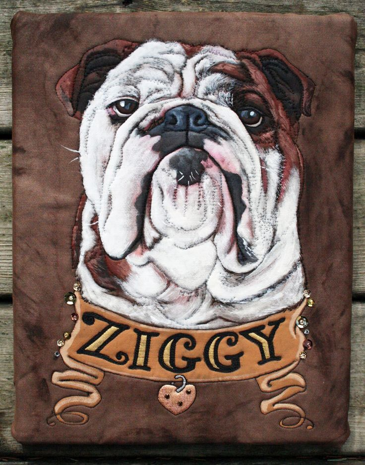 Ziggy Commissioned pet portrait piece. Completed: 2013