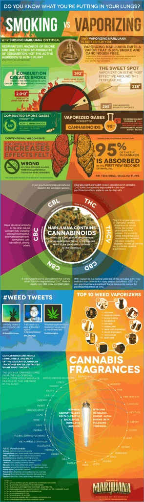 Fresh on IGM > #Weed Vaporizer vs #Smoking: If you like getting high then you
