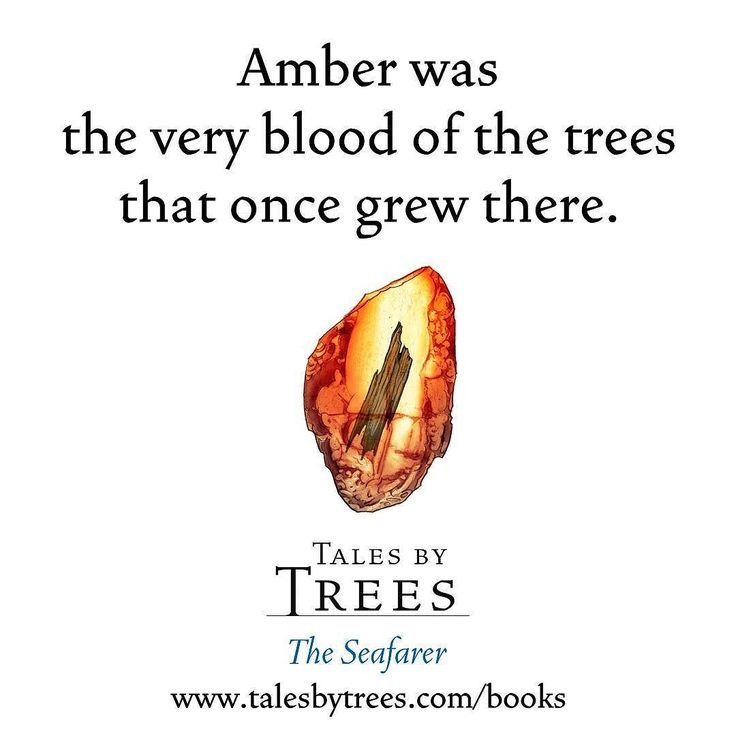 #Amber plays a major part in The Seafarer which is available from http://www.talesbytrees.com/books/  #ebook #fantasy #art