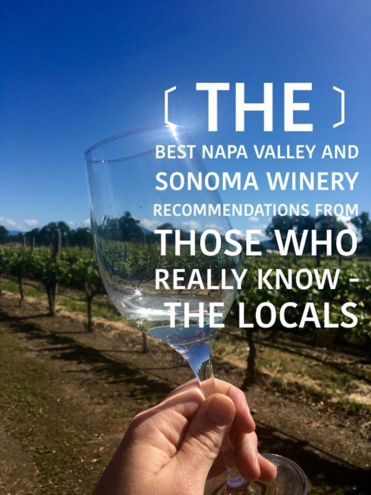 Napa Valley and Sonoma County Wineries: What the Locals Recommend:
