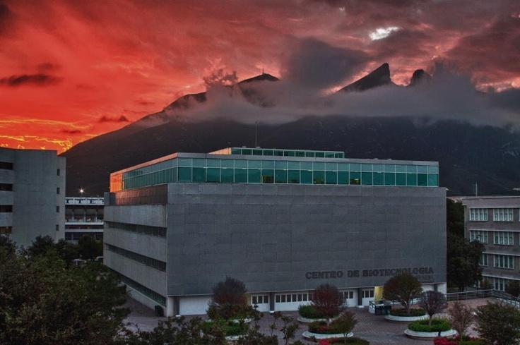 Amanecer desde el Cerro de la Silla.
