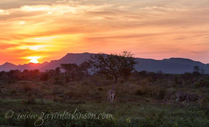 Sunrise at airstrip Photo Credit: Gavin Tonkinson