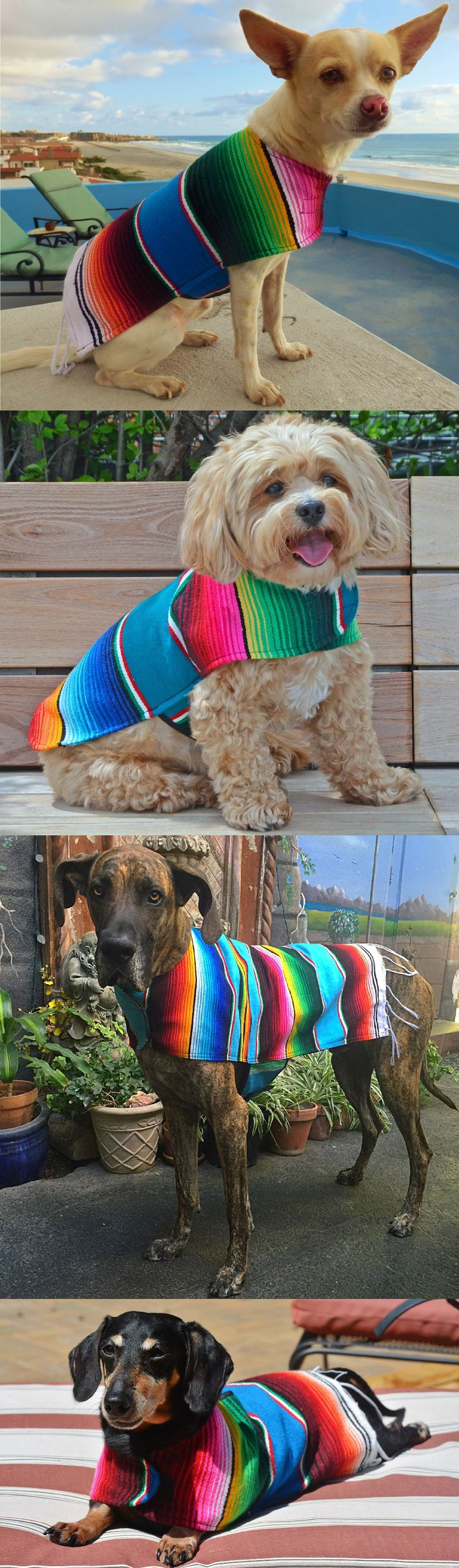 "Spring Sale! Use code ""BAJA20"" and save 20% off your poncho! *Proceeds donated to Baja Spay and Neuter Foundation. ☀️"