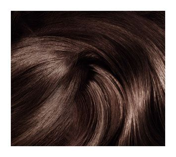 coloration chtain prfrence mousse absolue chtain 400 chtain fonc magistral - Coloration Chatain Fonc