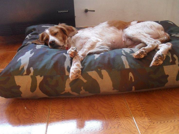 Colchon Puff Mascotas Cama Perros Gatos 70 X 50 Retira Ya!! - $ 320,00 en MercadoLibre