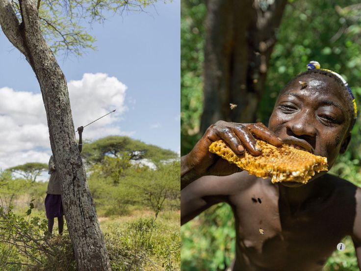 Hadza tribe, Tanzania. Image from NATIONAL GEOGRAPHIC, September 2014.