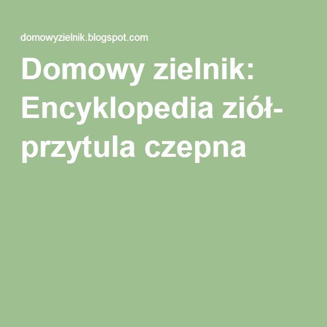 Domowy zielnik: Encyklopedia ziół- przytula czepna