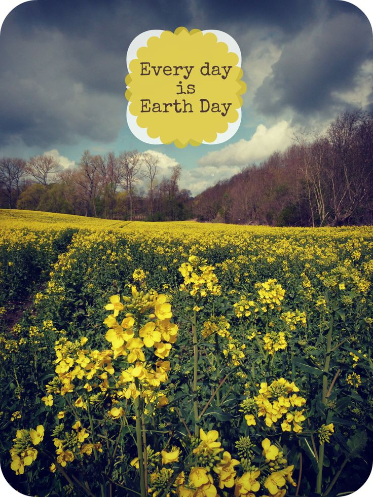 Best 25 Earth Day Quotes Ideas On Pinterest Mother
