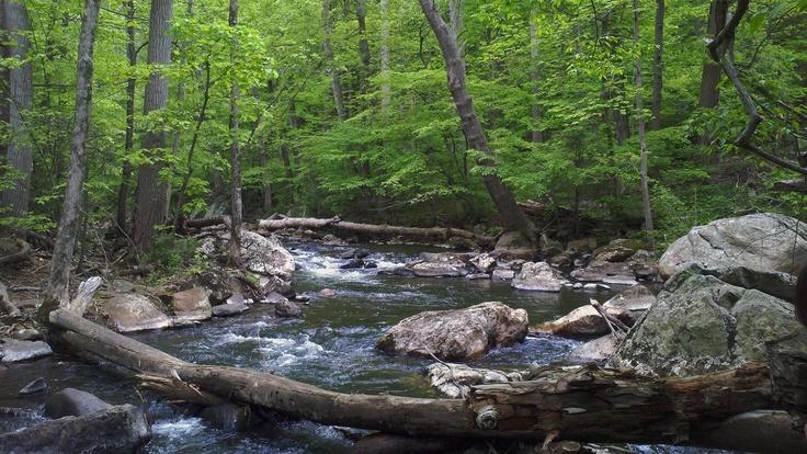 Raritan River in the Ken Lockwood Gorge, Califon, NJ