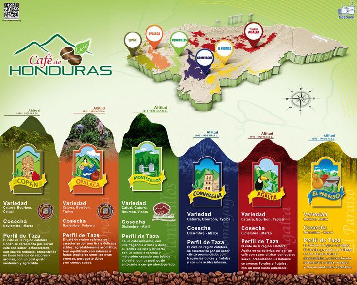 nuestras seis regiones cafetaleras de Honduras.