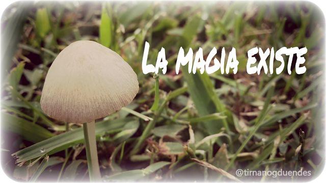 http://tirnanogduendes.blogspot.com.ar/