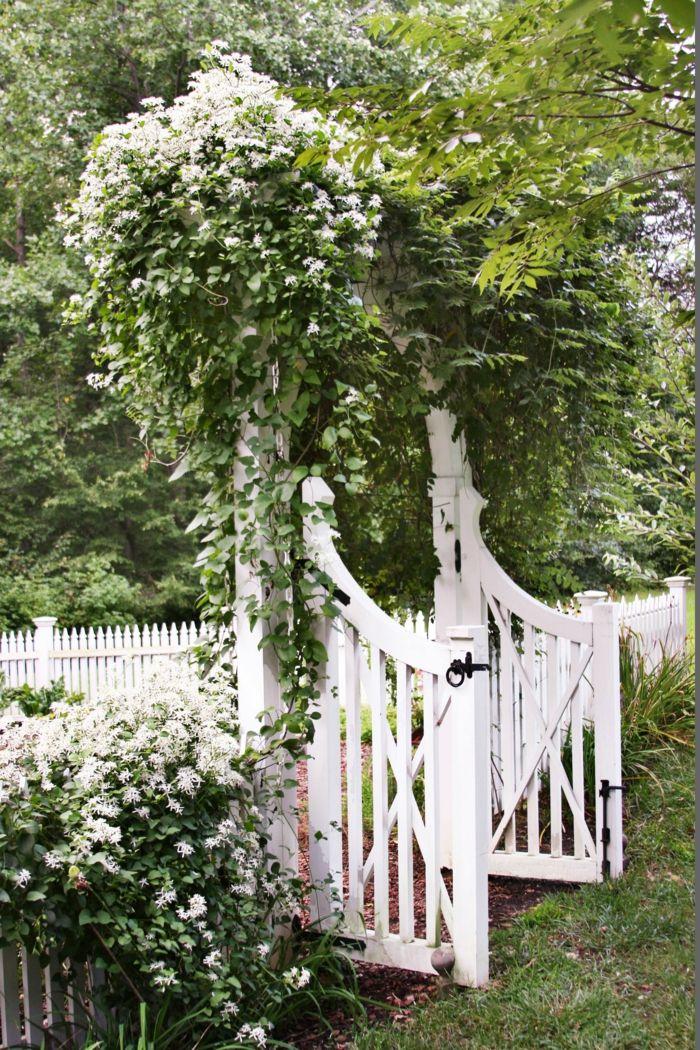 1001 Ideen Fur Garten Gestalten Mit Wenig Geld Garten Gestalten Garten Anlegen Kletternde Blumen