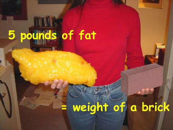 Still mad you lost 'only' five pounds of fat? Be proud!!! Time for a reality check for what that really looks like!