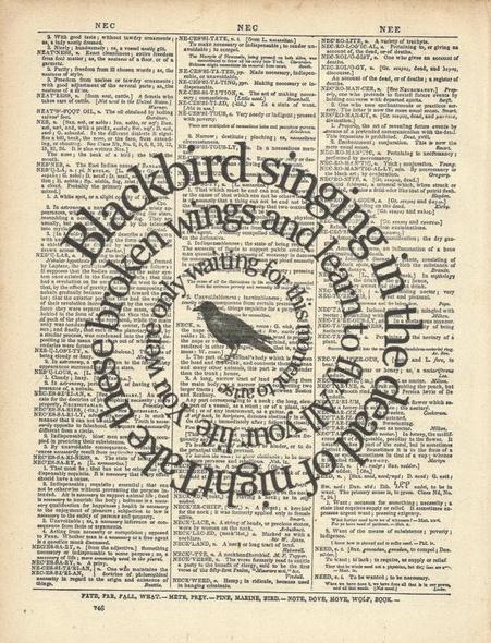 Blackbird - Beatles. My fav beatles song. I want this.