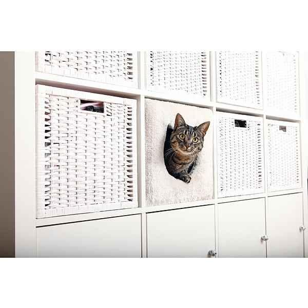 Katzenhöhle »passend für z.B. IKEA Kallax oder Expedit«