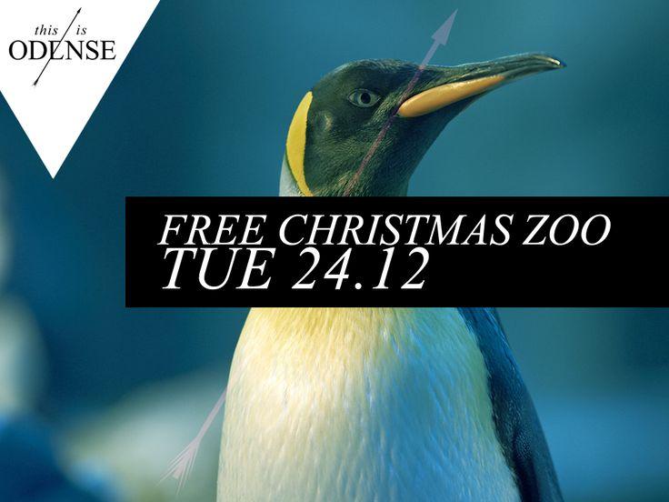 Kom gratis i Zoo juleaftensdag! #christmas #jul #zoo #odensezoo #odense Læs anbefalingen på: www.thisisodense.dk/7083/kom-gratis-i-zoo