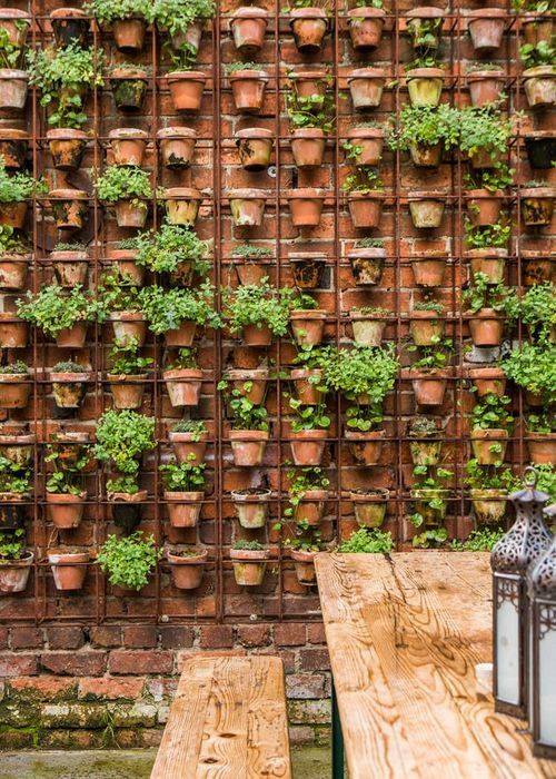 Create a walled garden using reinforcing mesh and terracotta pots.