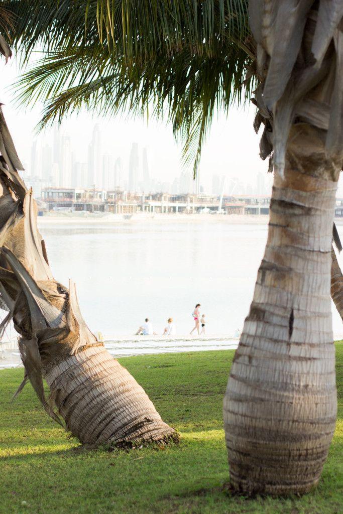 At Atlantis The Palm in Dubai