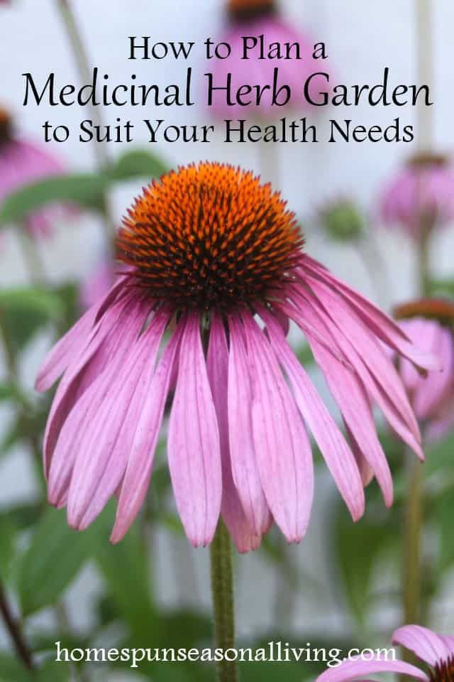 Plant a customized medicinal herb garden that is perfectly suited for your household's needs from common ailments to skin conditions and more with these easy guidelines.