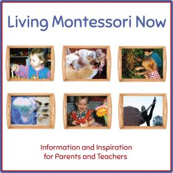 Great article discussing the various Montessori alphabet sequences that can be taught