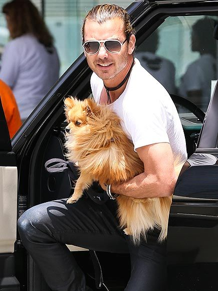 Gavin Rossdale and his little pup.