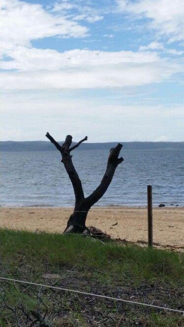 Coochimudlo Island, Brisbane, Qld