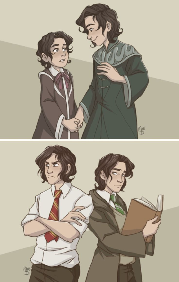 Sirius and Regulus Black | I love how the artist remembers that wizards wear rob…