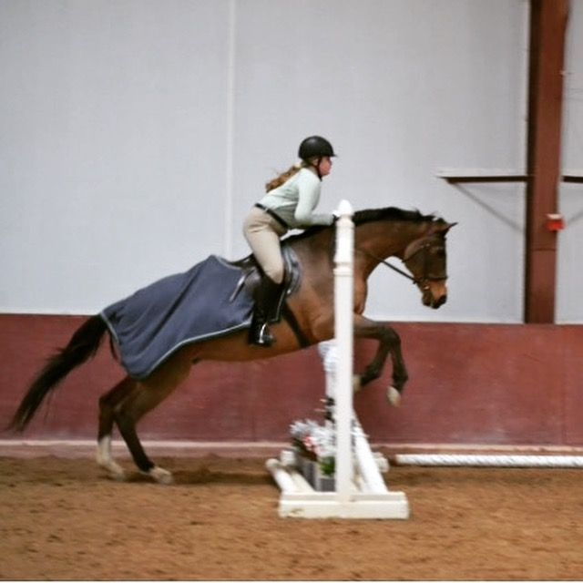 Fulfill all your riding needs this summer with Pony Camp, Adventure Camp, Competitive Edge Camp, or Polo Camp at Garrison Forest School's renowned equestrian facilities!!!