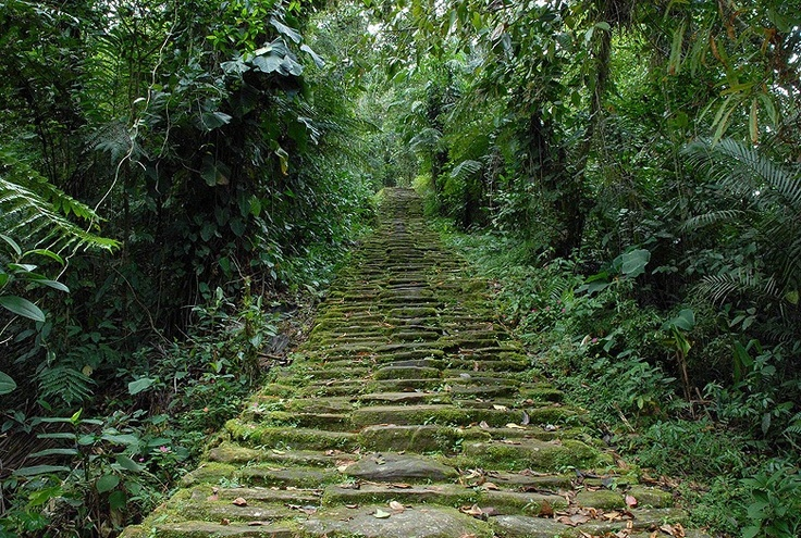 Steps to Ciudad Perdida or Teyuna, archeological site of an ancient City in Sierra Nevada de Santa Marta, Colombia
