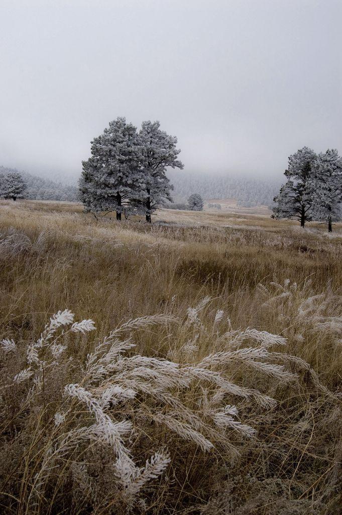 """""""soi tuulen laulu lohduton. On huhtikuu. On vaikein aika maan. Nyt kevät itkee luomistuskissaan.""""  www.avattava.fi"""