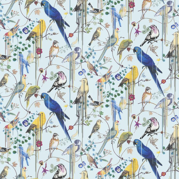 Birds Sinfonia by Christian Lacroix Pale Blue