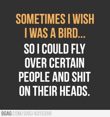 : Thoughts, So Funnies, Quotes, Big Birds, So True, Things, People, Book Jackets, True Stories