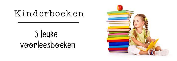 Ik heb het afgelopen schooljaar weer een aantal leuke boeken voorgelezen. Ik…