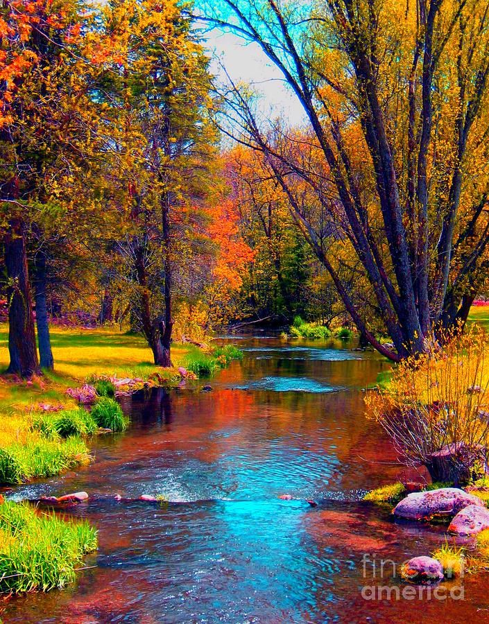 ✯ Reflections In A Country Brook