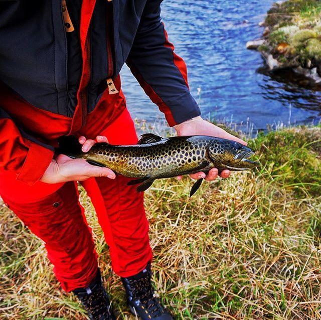 Fantastisk helg på fjellet.👌🏻 #fiske #norway #visitnorway #villmarksliv #njff #fjelltur #sonya6000 #nature #fishing #fjällräven #liveterbestute #turjenter #naturephotography